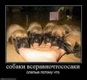 post-1-1326372320,3023_thumb.jpg