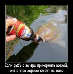 post-4069-0-11037200-1515534815_thumb.jpg
