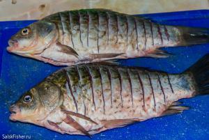 рыбалка (5 из 3).JPG