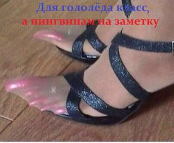 image.thumb.jpg.488fe59cd3fa0e63e6aee709e2f6f892.jpg
