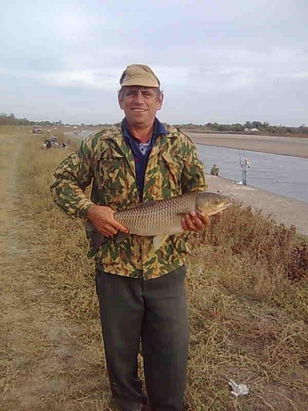 Прогноз клева рыбы в сальске и сальском районе