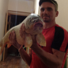 Болезни диких животных - последнее сообщение от Александр Ставропольский