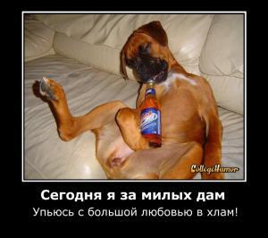 post-1077-1358880766,5528_thumb.jpeg