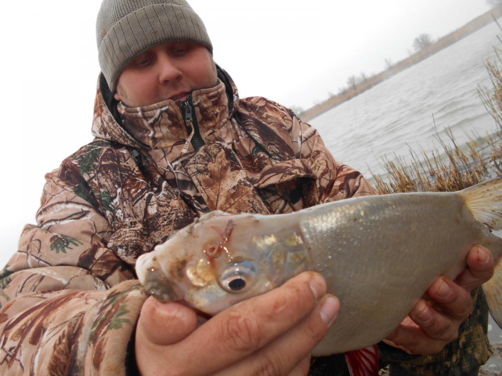 Рыбалка в теплом канале волгодонск