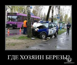 post-42-1299302303,1464_thumb.jpeg