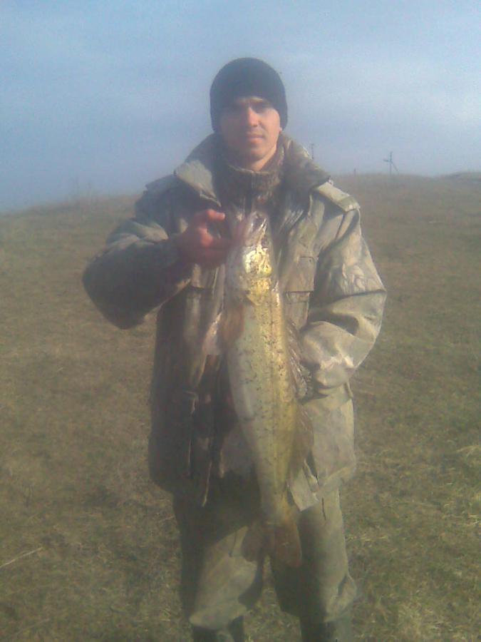 Сальскфишер отчеты о рыбалке