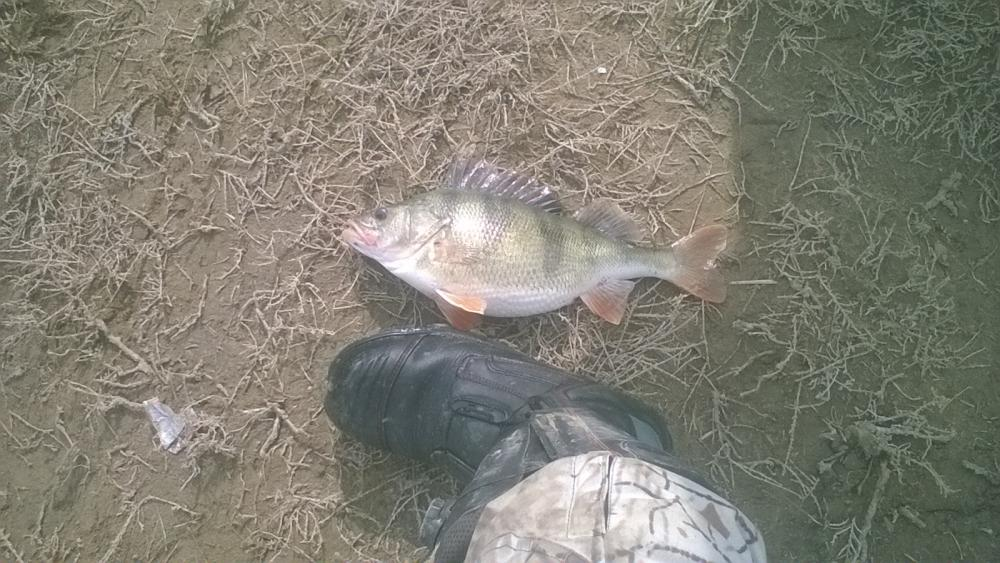 Рыбалка на озере дадынском