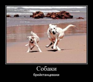 post-7-1341480333,3779_thumb.jpg