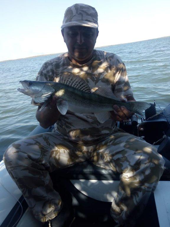 Рыбалка на веселовском водохранилище 2019 форум
