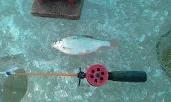 D фото рыбалка 2-3 января 2019г 016.jpg