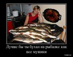 image (41).jpg